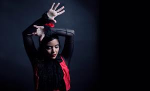 Espectáculos flamenco- Marta Aramburu