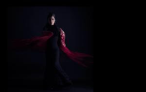 Marta Aramburu Flamenco -imagenes