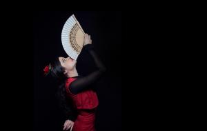Marta Aramburu Flamenco - Contacto